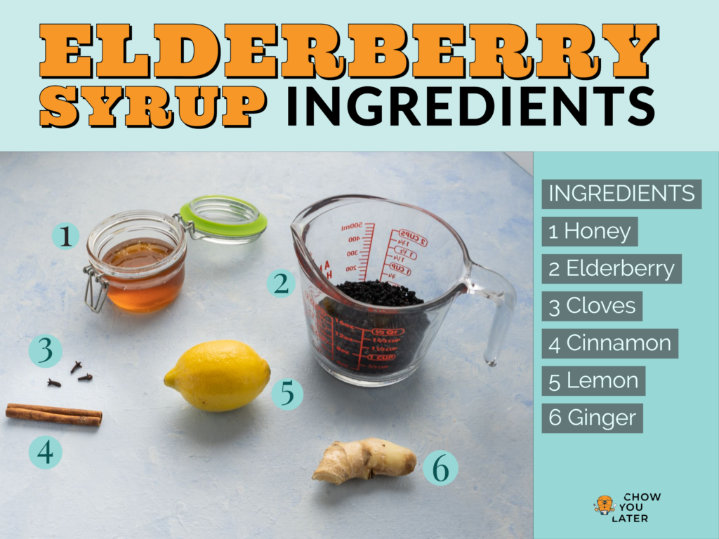 A list of elderberry syrup ingredients